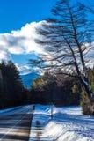 Strada congelata immagine stock