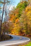 Strada Curvy di autunno Fotografie Stock Libere da Diritti