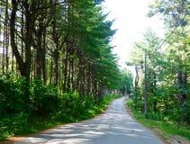 Strada d'avvolgimento a distanza e isolata della montagna in Maine Fotografia Stock Libera da Diritti
