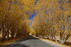 Strada da Kashgar a Tashkurghan immagine stock libera da diritti