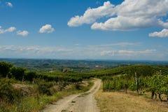 Strada da wine Fotografia Stock Libera da Diritti