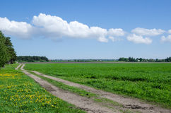 Strada degli agricoltori al campo Fotografie Stock