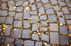 Strada dei Cobble-stones immagine stock