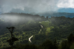 Strada del Bhutan Fotografie Stock