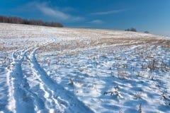 Strada del campo di inverno Immagine Stock