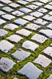 Strada del Cobblestone Fotografia Stock Libera da Diritti