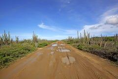 Strada del deserto Immagine Stock