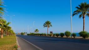 Strada del lungonmare con le palme il giorno soleggiato fotografia stock