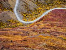 Strada del parco di Denali in autunno Immagini Stock Libere da Diritti