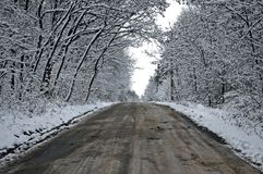 Strada del traforo dello Snowy dalla foresta al cielo nuvoloso Fotografia Stock