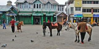Strada del viale di Darjeeling Fotografia Stock Libera da Diritti