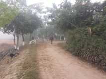 Strada del villaggio di bellezza di mattina fotografie stock libere da diritti
