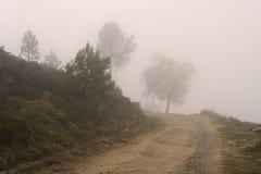 Strada dell'alta montagna in mattina nebbiosa Immagini Stock Libere da Diritti