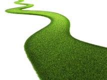 Strada dell'erba illustrazione vettoriale