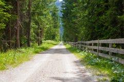 Strada della bici in Tirolo del sud Immagine Stock