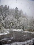 Strada della bufera di neve Immagini Stock Libere da Diritti