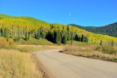 Strada della contea attraverso la tremula gialla e verde durante la stagione di fogliame Immagini Stock Libere da Diritti