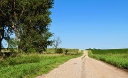 Strada della ghiaia del cielo blu fotografie stock libere da diritti