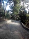 strada della ghiaia nel parco Immagine Stock