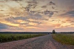 Strada della ghiaia nel tramonto di estate Immagini Stock