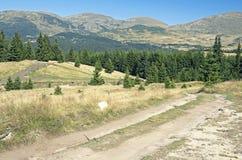 Strada della montagna in altopiani Fotografie Stock Libere da Diritti