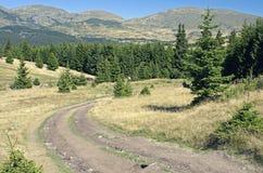 Strada della montagna in altopiani Immagini Stock