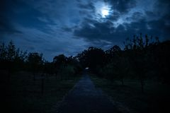 Strada della montagna attraverso la foresta su una notte della luna piena Paesaggio scenico di notte del cielo blu scuro con la l fotografia stock