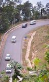 Strada della montagna con la foresta verde Fotografia Stock