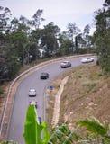 Strada della montagna con la foresta verde Immagini Stock Libere da Diritti