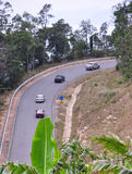 Strada della montagna con la foresta verde Immagine Stock Libera da Diritti
