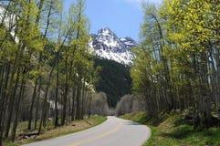 Strada della montagna della primavera Immagine Stock