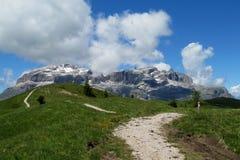 Strada della montagna di Unparved in valle verde Immagine Stock Libera da Diritti