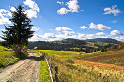 Strada della montagna e paesaggio al giorno soleggiato di autunno, montagna di Radocelo Immagine Stock
