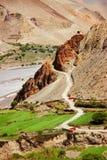Strada della montagna in Himalaya nepal Il regno del ` più basso del mustang del ` Immagini Stock