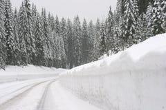 Strada della montagna nella bufera di neve Immagine Stock