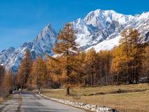 Strada della montagna nella caduta Nel fondo la foresta ed il pe nevoso Fotografia Stock Libera da Diritti