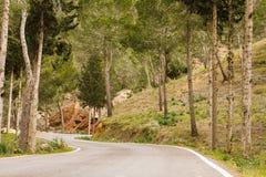Strada della montagna nella foresta Fotografia Stock