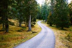 Strada della montagna nelle dolomia delle montagne Immagine Stock