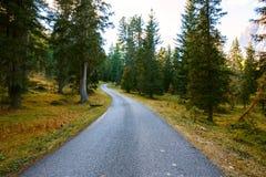 Strada della montagna nelle dolomia delle montagne Fotografia Stock