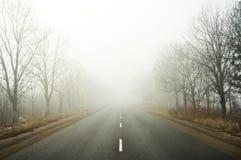 Strada della nebbia Fotografia Stock Libera da Diritti