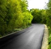 Strada della pavimentazione che gira a sinistra fotografia stock libera da diritti