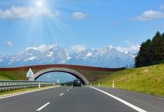 Strada della primavera alla vista sunshiny della montagna Fotografia Stock