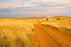 Strada della savanna del Sandy Immagine Stock Libera da Diritti