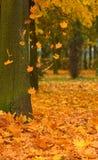 Strada della sosta di autunno Immagini Stock Libere da Diritti