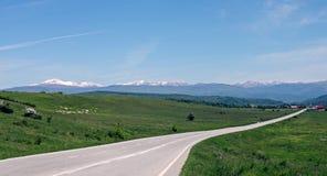 Strada della valle e paesaggio delle pecore in Romania Fotografia Stock Libera da Diritti