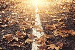 Strada delle foglie di autunno Fotografia Stock Libera da Diritti