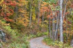 Strada di autunno immagine stock