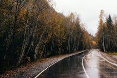 Strada di autunno Fotografie Stock Libere da Diritti