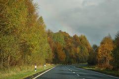 Strada di autunno dopo una pioggia Fotografie Stock Libere da Diritti