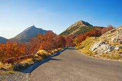 Strada di autunno nelle montagne Il Montenegro, parco nazionale di Lovcen immagini stock